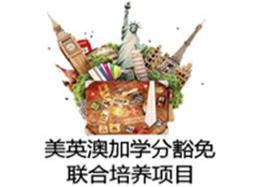 2020年2+2艺术管理方向国际本科招生简章